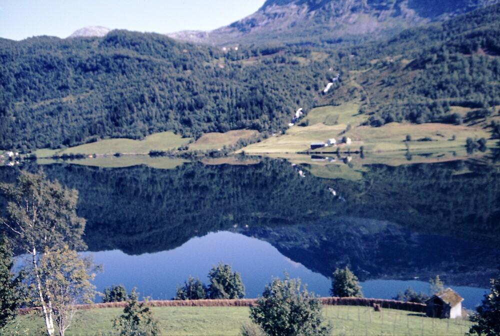 Norwegian fjord by jensNP