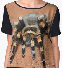 Mexican Redknee Tarantula Chiffon Top