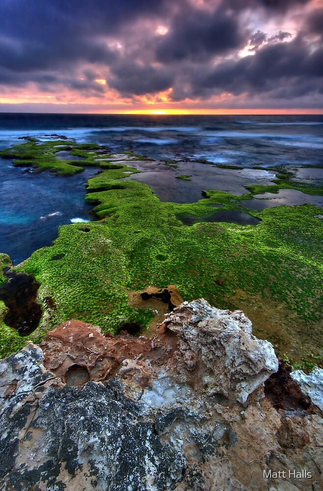 Peninsula Sunset on a Stand by Matt Halls