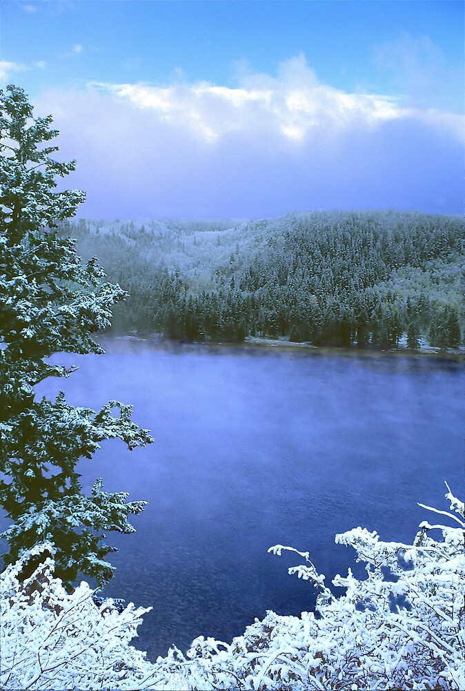 First Snow by Steve  Taylor