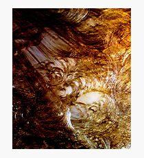 Genesis Photographic Print
