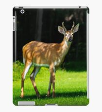 Young Whitetail Deer iPad Case/Skin