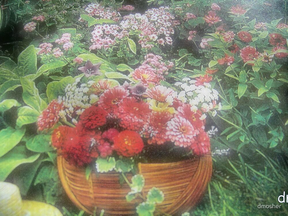 Mum's Garden by dmosher