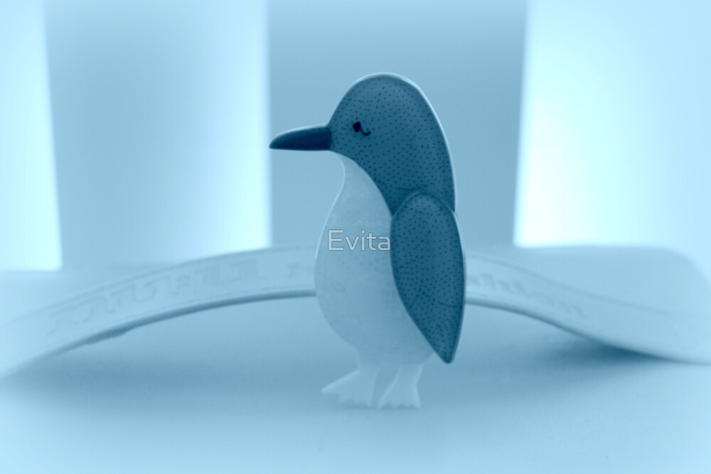 Little Penguin Blue by Evita