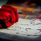 Liebe ist ... Eine rote Rose von Evita