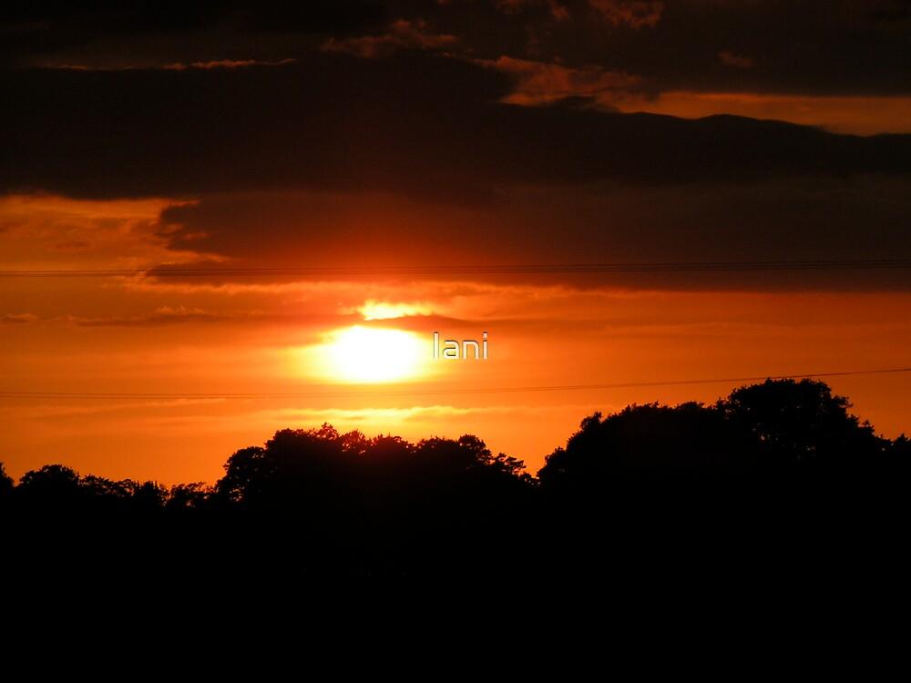 sunset over dauntsey village  by Iani
