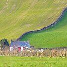 Inch Island Cottage............................Ireland by Fara