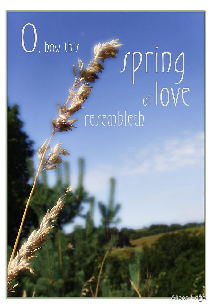 Valentine Spring by Alison Edge