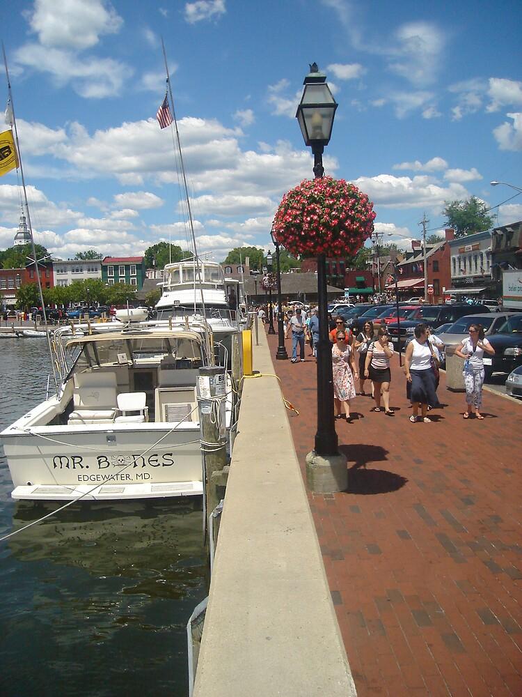 Annapolis by Nicole Curet