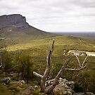 Looking over the ranges at Dunkeld, Victoria by Elana Bailey