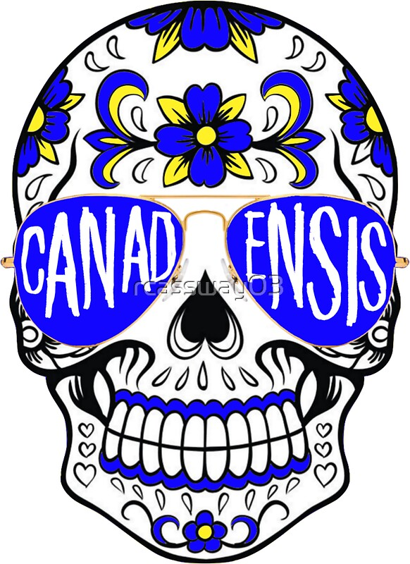 Camp Canadensis Skull by rcassway03