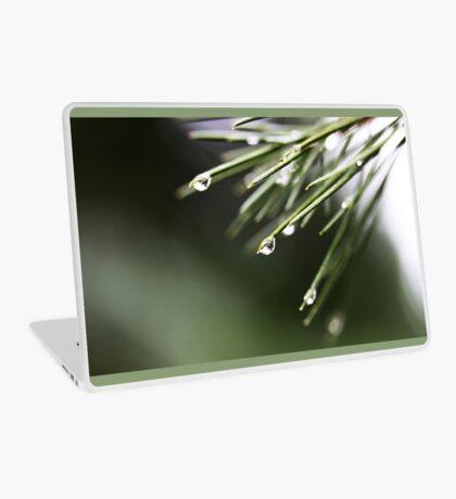 Regen und Pinien Laptop Folie