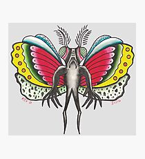 Thee MOTHMAN Photographic Print