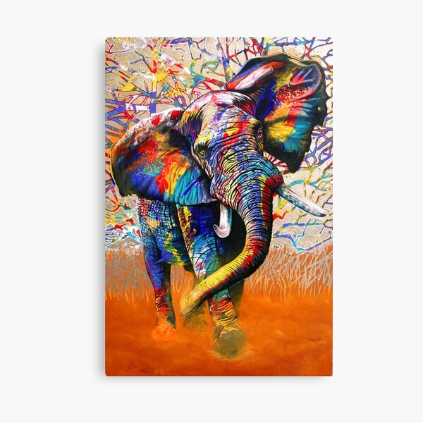 African Colours Canvas Print