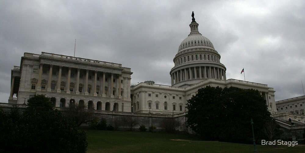 U.S. Capital Building West by Brad Staggs