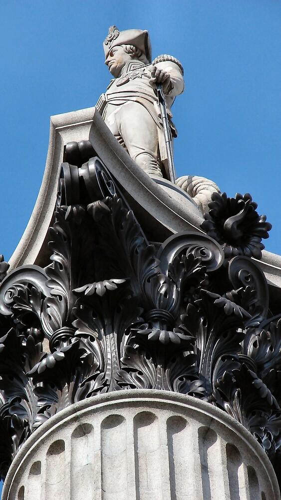Nelson, Trafalgar Square, London, UK by chadg