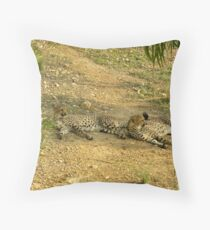 Cheaters  Throw Pillow