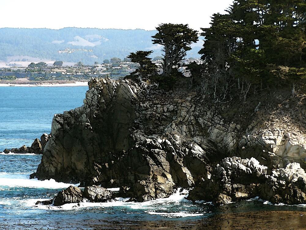 Californian Coastline by Christopher  Cooper