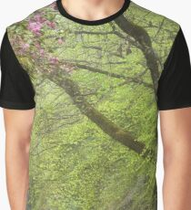 The Colours of Spring - Mt Wilson NSW Australia Graphic T-Shirt