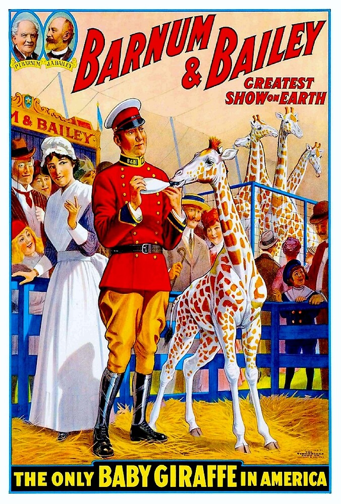BARNUM & BAILEY: Vintage Circus Giraffes Advertising Print by posterbobs