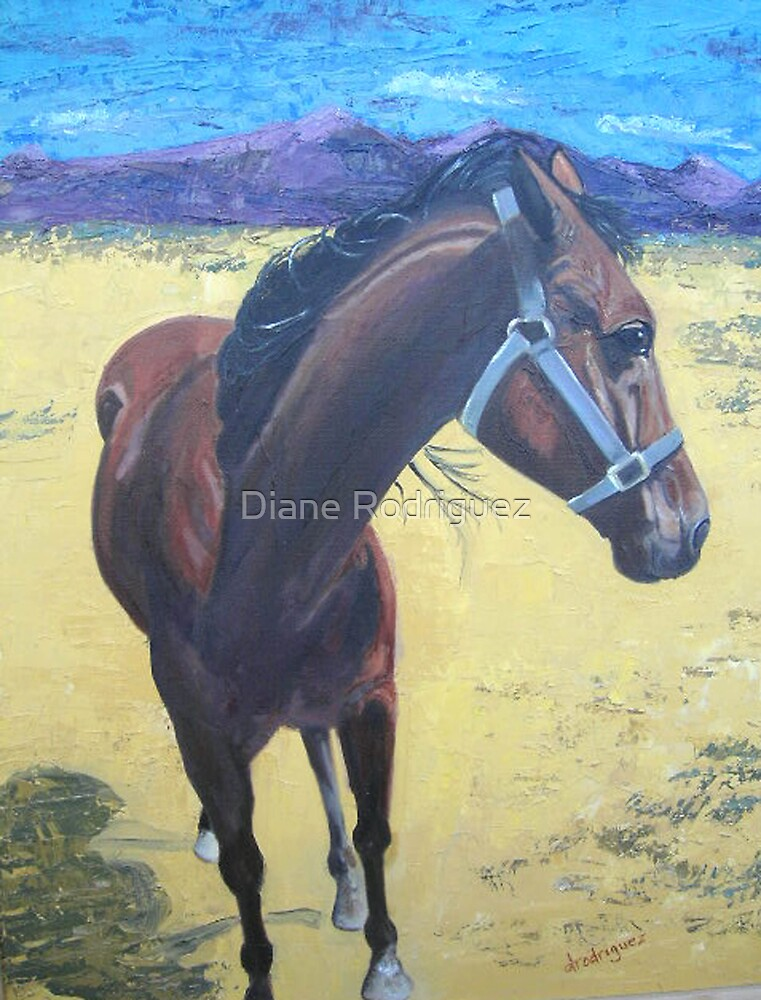 Tano the Arabian by Diane Rodriguez