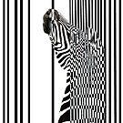 Zebra VHS by Uncle McPaint