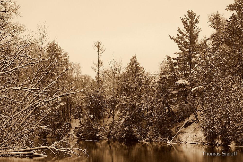 Winter River by Thomas Sielaff