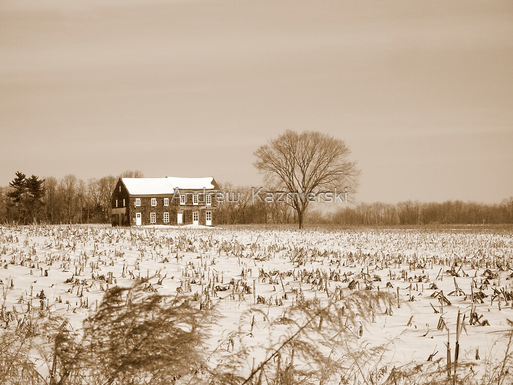 Molly Pitcher Home Sepia by andykazie