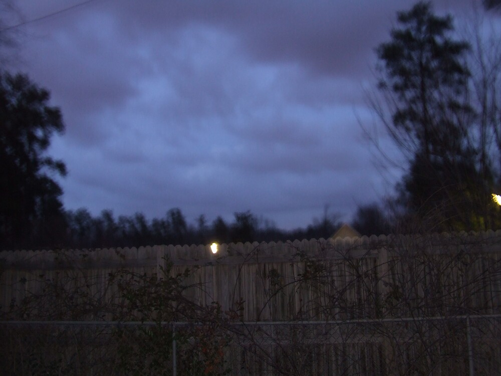 Night Sky by Ray1945