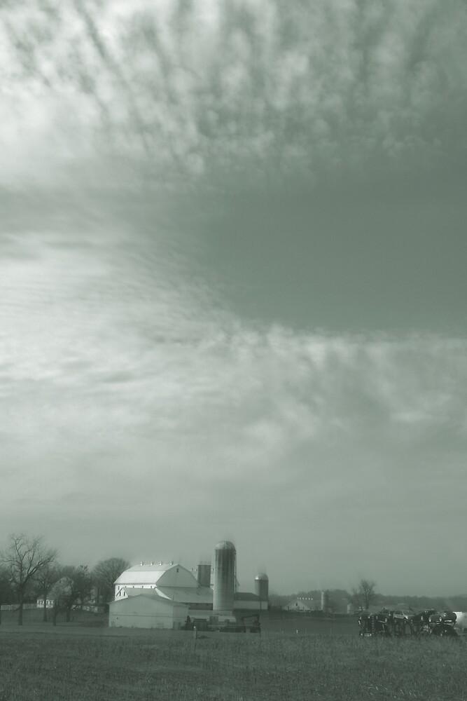Farmscape by Jenn  Dixon
