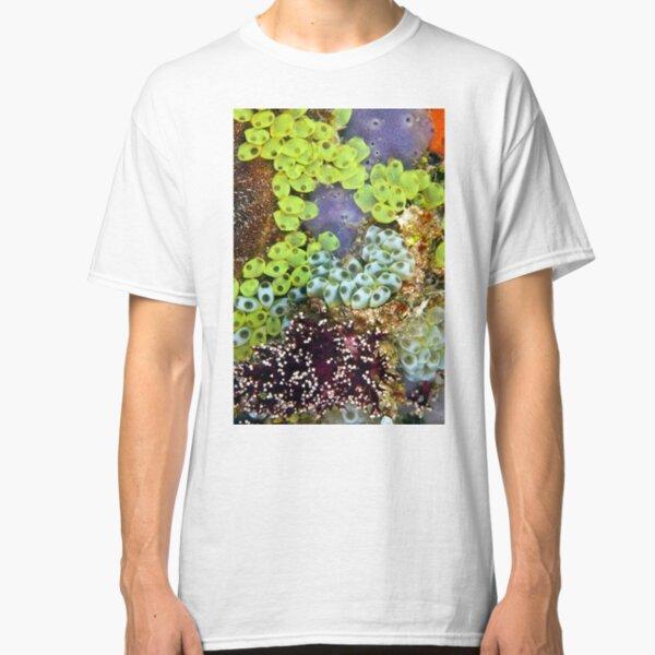 Potpourri Classic T-Shirt