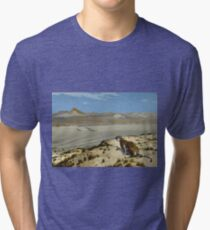 Jean - Leon Gerome - Tiger On The Watch Tri-blend T-Shirt