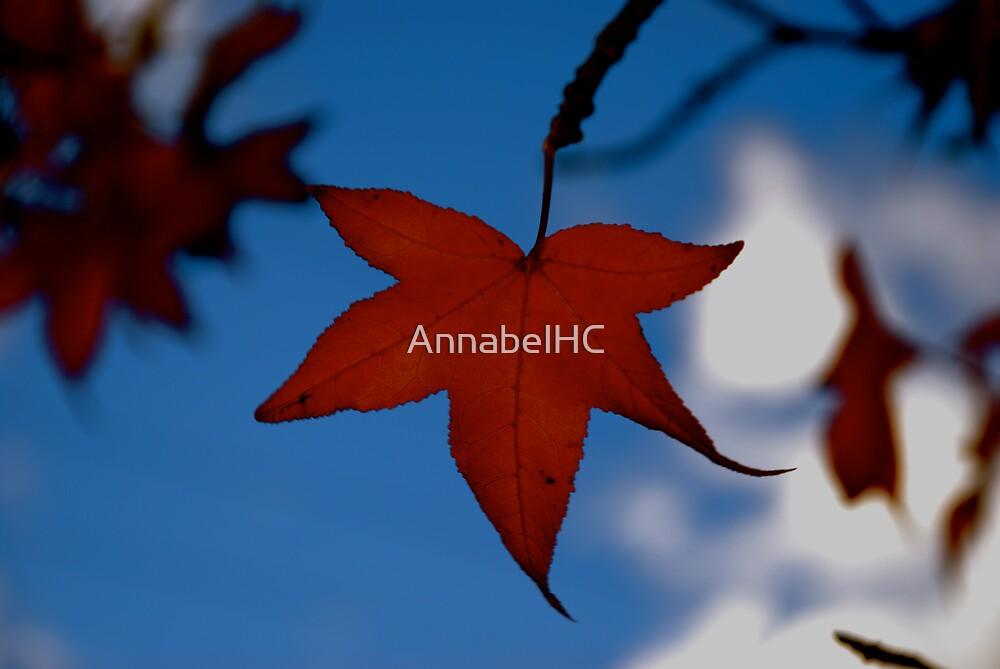 Autumn by AnnabelHC