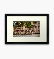 1239 Staying in the shade Framed Print