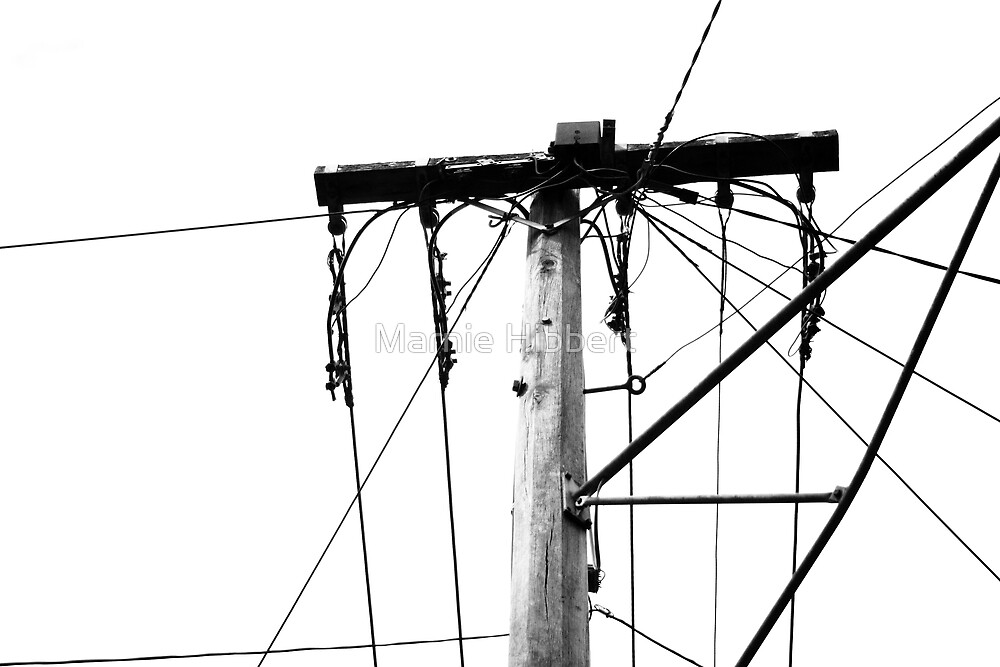 Wired Pole by Marnie Hibbert