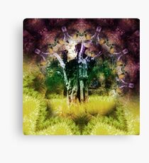 Animal Collective Meeting of the Waters! Canvas Print