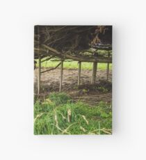 Cows Sheltering Hardcover Journal