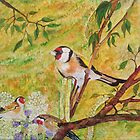GOLD FINCHES by Marilyn Grimble