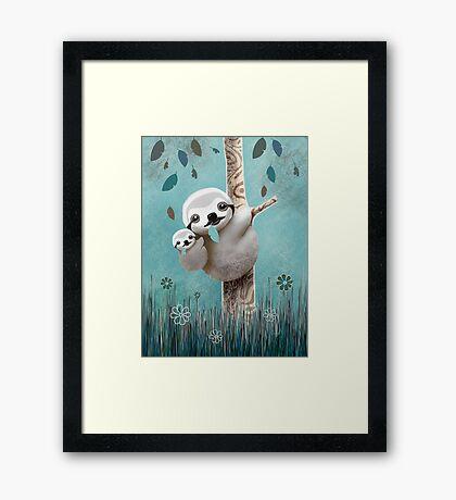 Baby Sloth Daylight Framed Print
