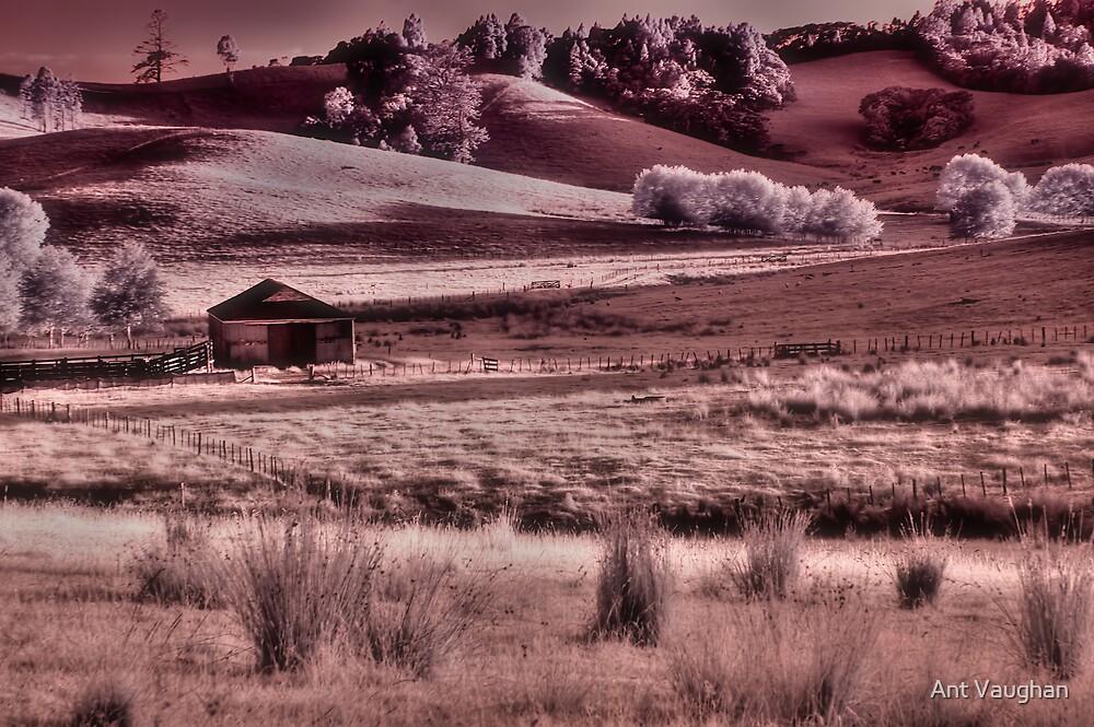 FarmIR by Ant Vaughan