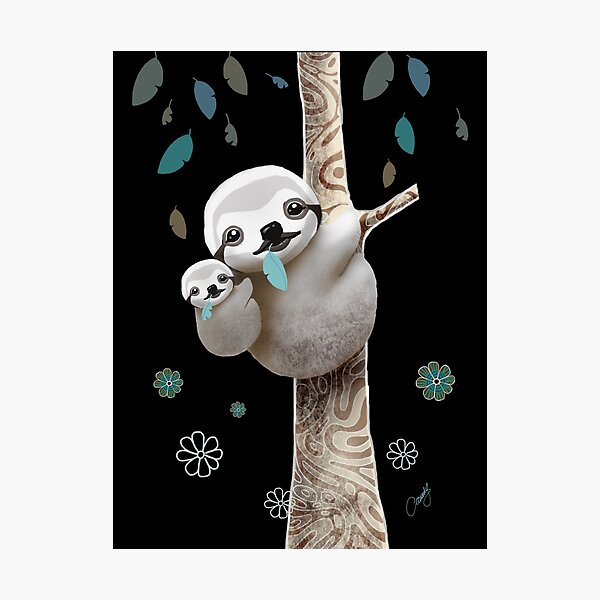 Baby Sloth Midnight Photographic Print