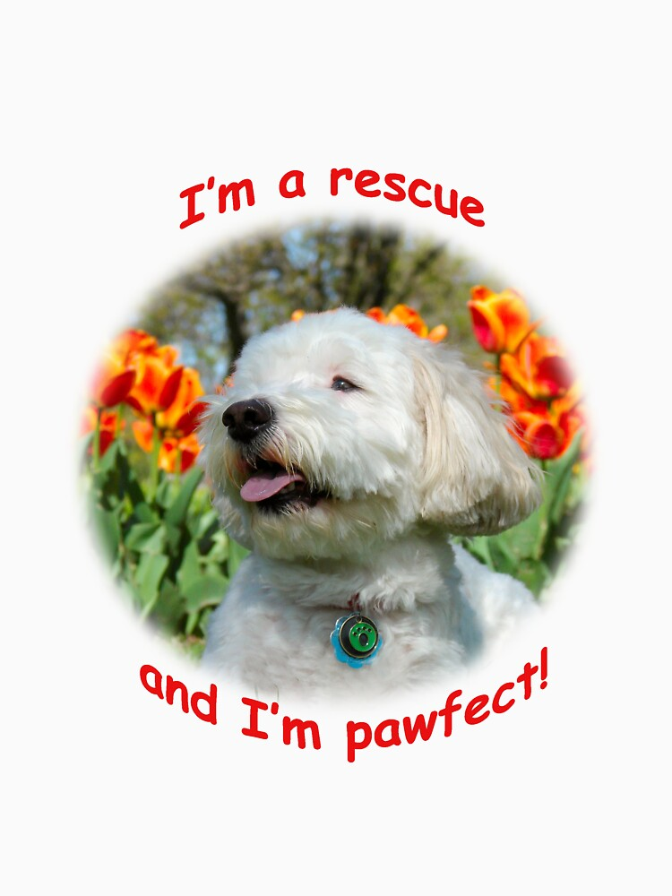 I'm a rescue and I'm pawfect by Idil