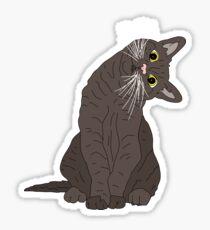 Wanderlust Cat Sticker