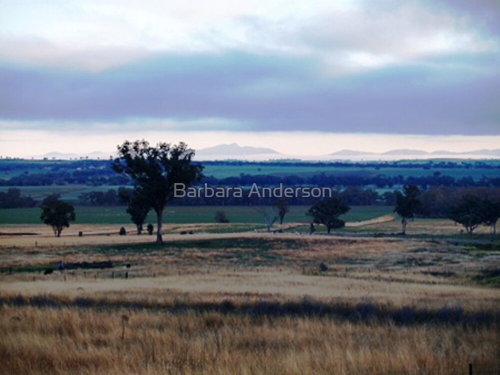The View by Barbara Anderson