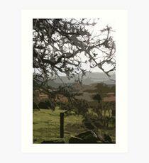 Ceredigion, Wales Art Print