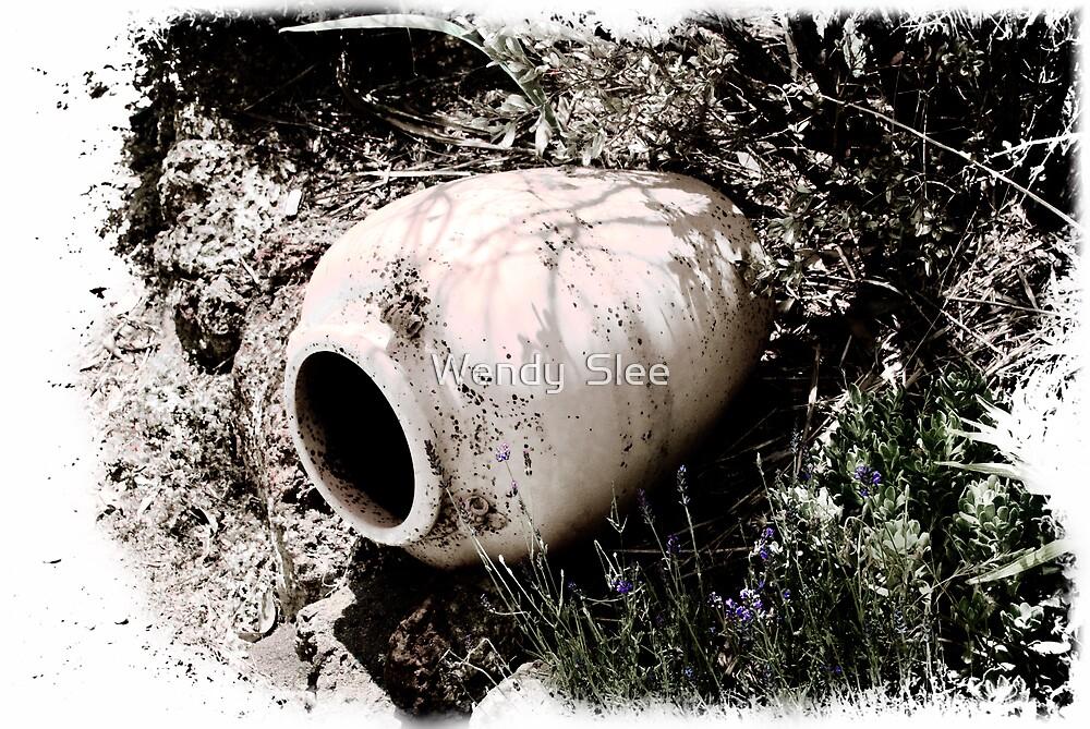 Empty vessel? by Wendy  Slee