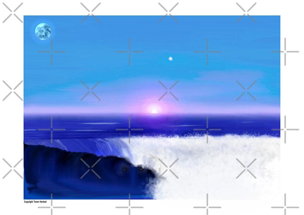 17 wave by Trevor  Herbert
