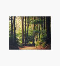 Woods Are Calling Art Board Print