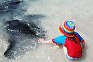 Stingrays Of Hamelin Bay (lll) by Wendy  Slee