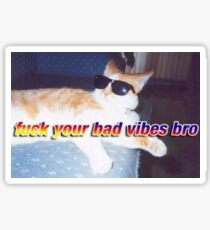 Aesthetic Cool Cat  Sticker